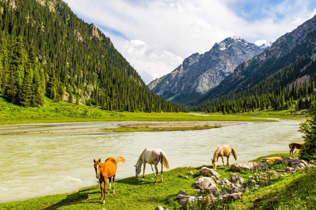 Altyn Arashan valley in Kyrgyzstan near Karakol