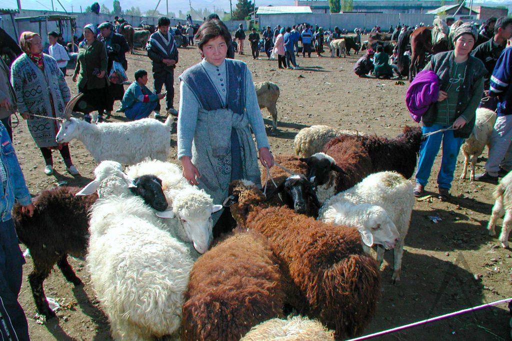 Sunday animal bazar in Karakol, Kyrgyzstan